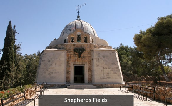Shepherds Fields
