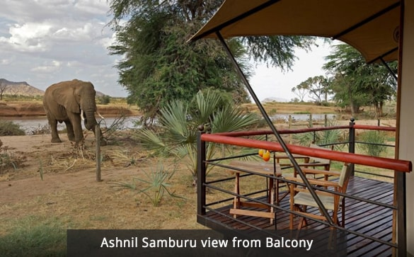 Ashnil Samburu view from Balcony