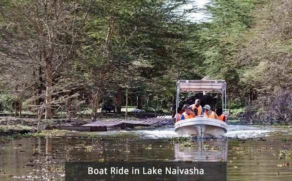 Boat Ride in Lake Naivasha