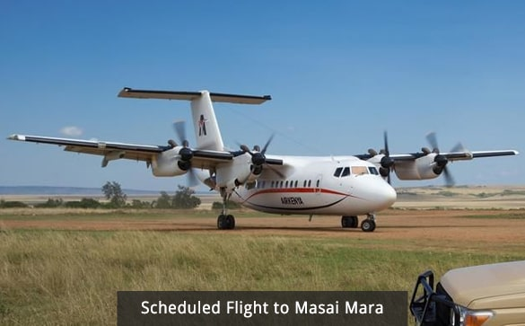 Scheduled Flight to Masai Mara