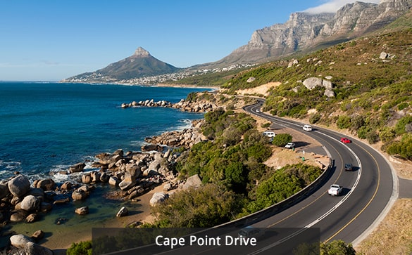 Cape Point Drive