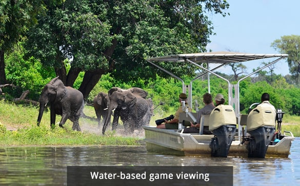 Water-based game viewing