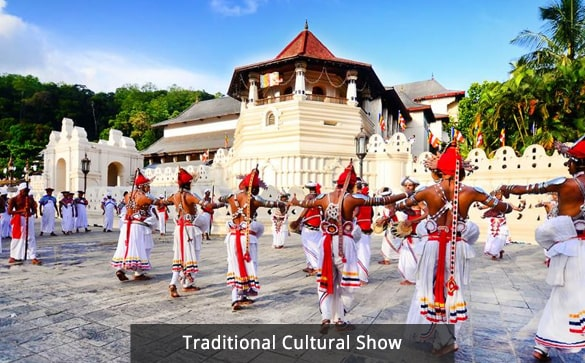 Traditional Cultural Show