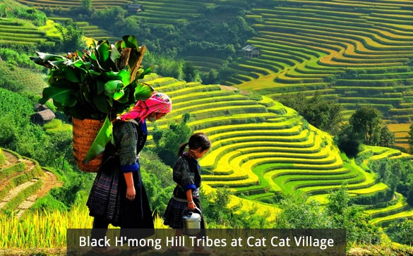 Black H'mong Hill Tribes at Cat Cat Village