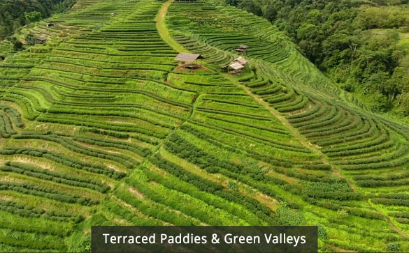 Terraced Paddies & Green Valleys
