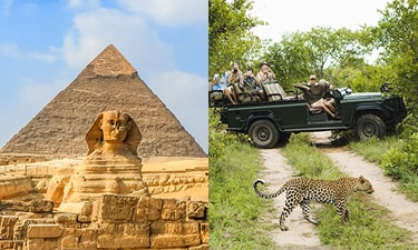 Egypt - South Africa Review Image