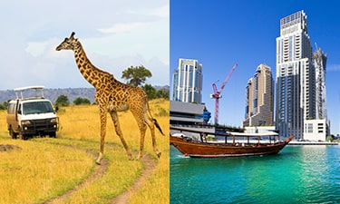 Kenya - Dubai Review Image