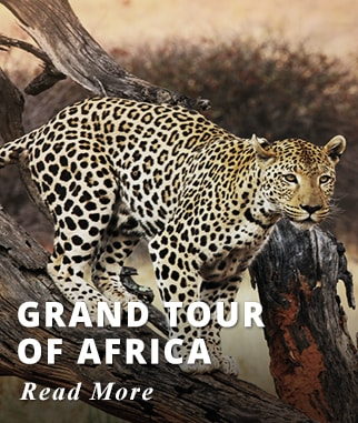 Grand Tour of Africa