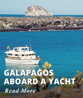 Galapagos aboard a Yacht