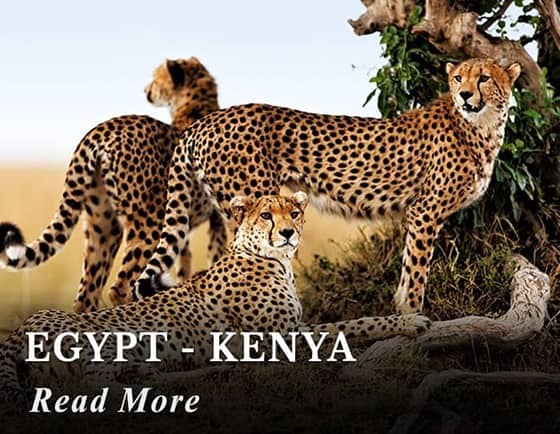 Egypt - Kenya Tours