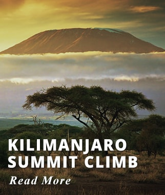 Kilimanjaro Climb with Summit