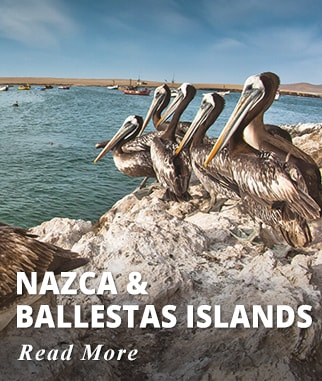 Nazca and Ballestas Islands Tour