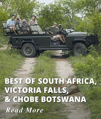 Best of South Africa, Victoria Falls & Chobe Botswana Tour