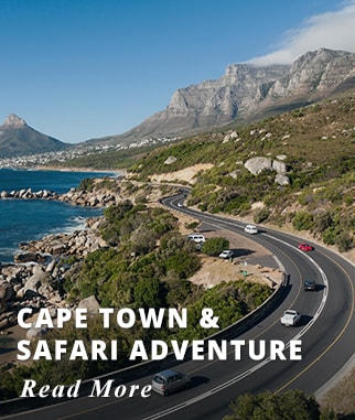 Cape Town - Safari Adventure Tour
