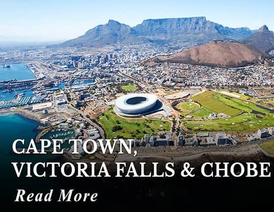 Cape Town, Victoria Falls, and Chobe Botswana Tour