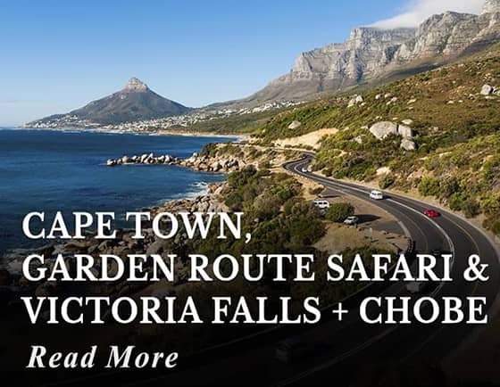 Cape Town, Garden Route Safari & Victoria Falls with Chobe Tour