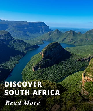 Discover South Africa Tour