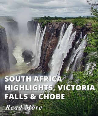 South Africa Highlights - Victoria Falls - Chobe