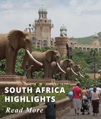 South Africa Highlights Tour