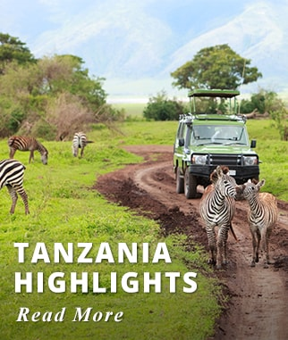 Tanzania Highlights Tour
