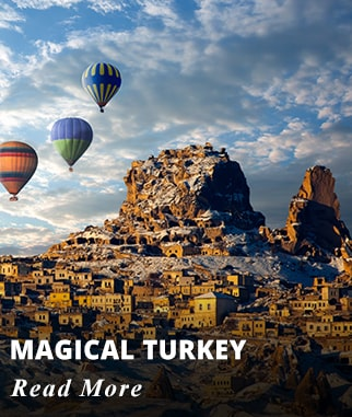 Magical Turkey