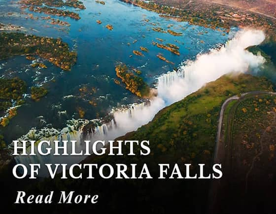 Highlights of Victoria Falls Tour