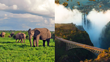 South Africa, Victoria Falls and Botswana Tour
